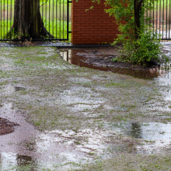 What Can Be Done to Prevent Sewage Backups?