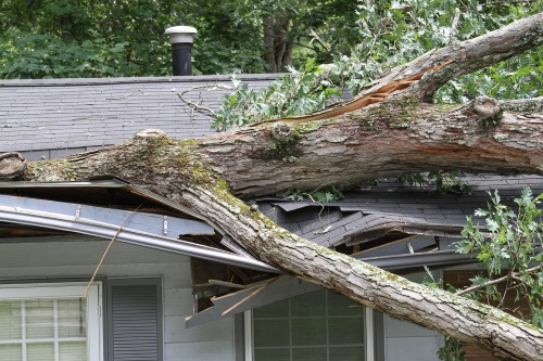 Ocala Storm Damage Restoration and Roof Repair - OneRestore
