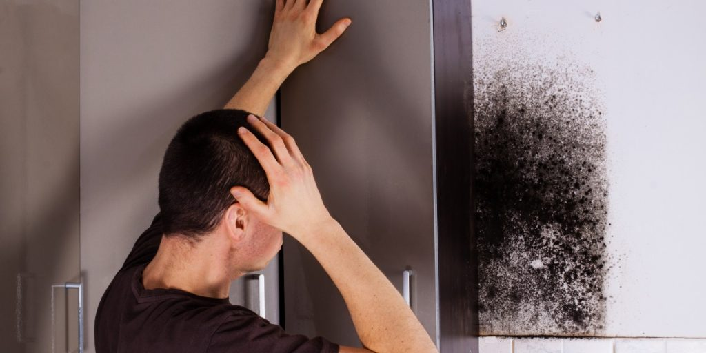 Can Mold In My Home Make Me Sick