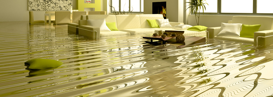 What Should I Do If I Have Water Damage or Flooding?