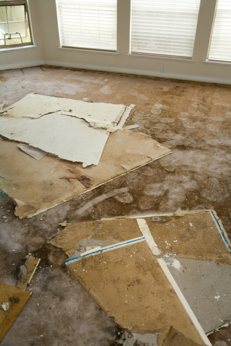 What To Do If You Have Water Damage - OneRestore